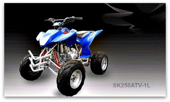 Jonway ATV SK250ATV-1L