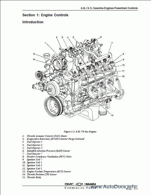 Isuzu 6.0L/8.1L Gas Engine Powertrain Controls repair