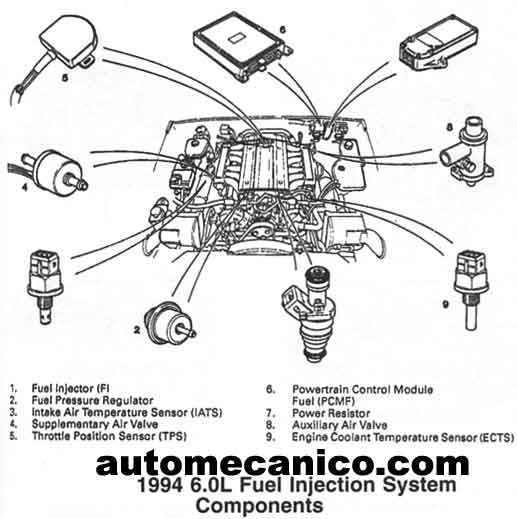 Jaguar Xj6 1979 Wiring Diagram, Jaguar, Free Engine Image