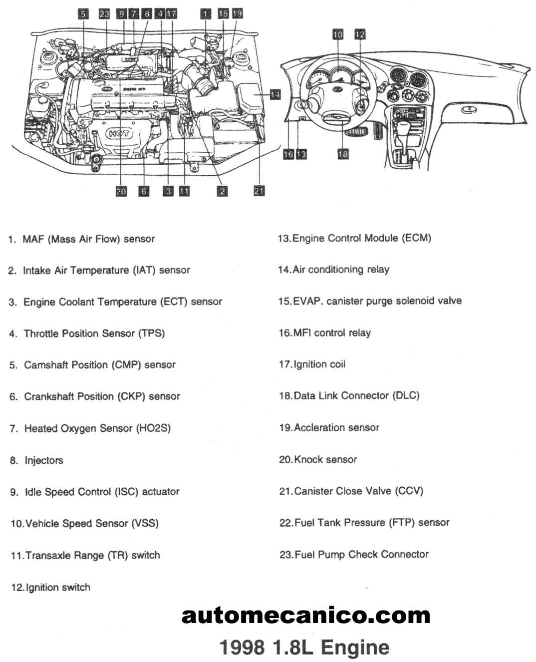 2001 Hyundai Elantra Engine Diagram, 2001, Free Engine