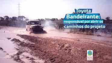 Projeto Arara Azul Toyota 03