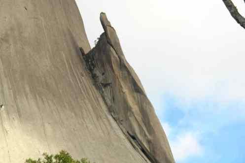 O lagarto subindo a pedra