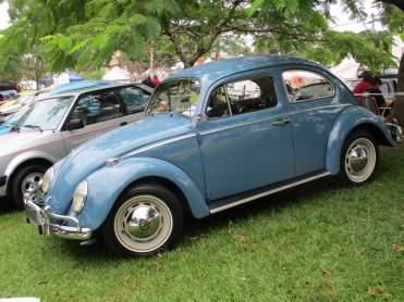 VW Fuscas (6)