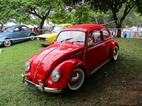 VW Fuscas (7)