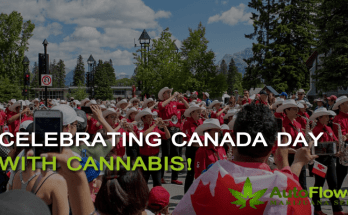 celebrating Canada day with cannabis