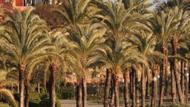 10 planes y viajes que hacer en Mallorca en invierno