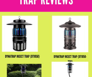 Dynatrap insect trap reviews 2020 (unbiased Buyers Review)