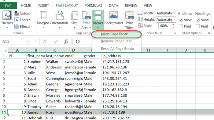 Working with Page Breaks in Excel & VBA