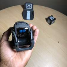 50 Things You Can Ask Vector: The Robot with a Mind of its