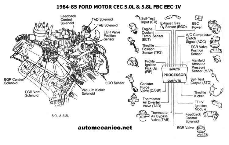 Ford Tfi Distributor Wiring Diagram Ford TFI Ignition