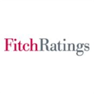 Fitch Affirms Stable Rating for LeasePlan, Wheels Inc