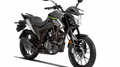 Sirius 190: Sporty Look and Naked Attitude