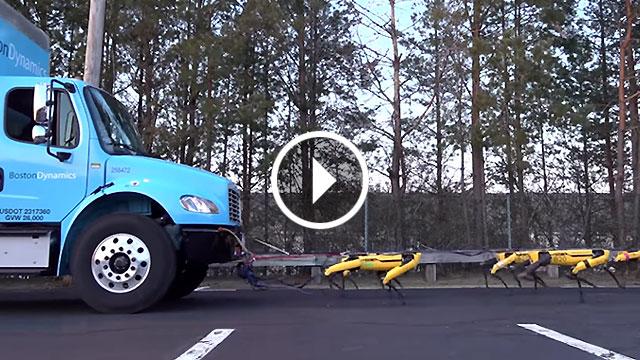 Koliko pasa može vući kamion?