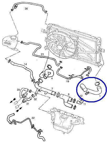 Manguera original de radiador Astra 1.8 (superior