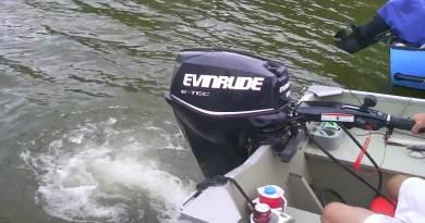 2010-2011 Evinrude E-Tec 30HP (30 HP) Stalls