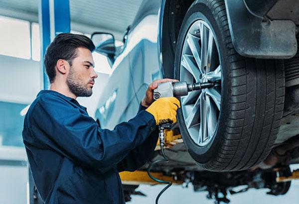 distribución de neumáticos