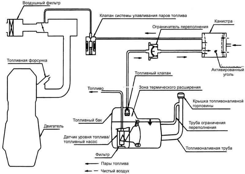 Хендай Элантра. Система улавливания паров топлива. Hyundai