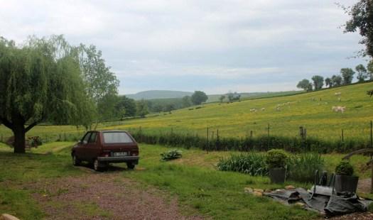 Une Visa Citroën qui admire quelques charolaises à Dompierre-Sur-Héry, dans la Nièvre toujours...