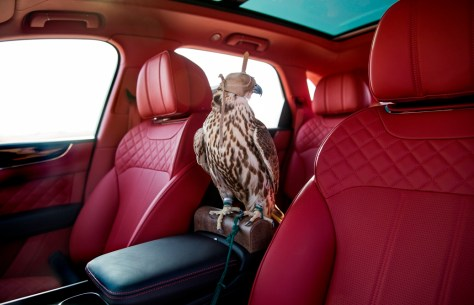 Bentley Bentayga Falconry by Mulliner