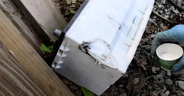 Why Do Car Batteries Leak