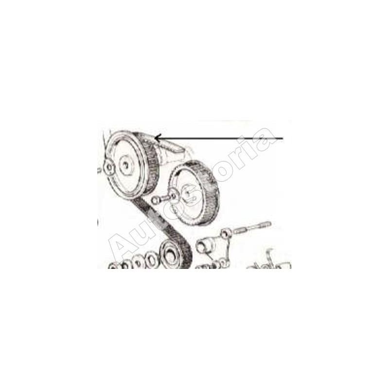 Courroie de distribution124 Coupe, Spider 1592/1608/1756