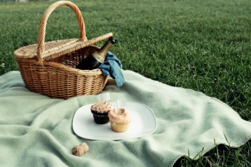 Yummy Teen picnic dykes