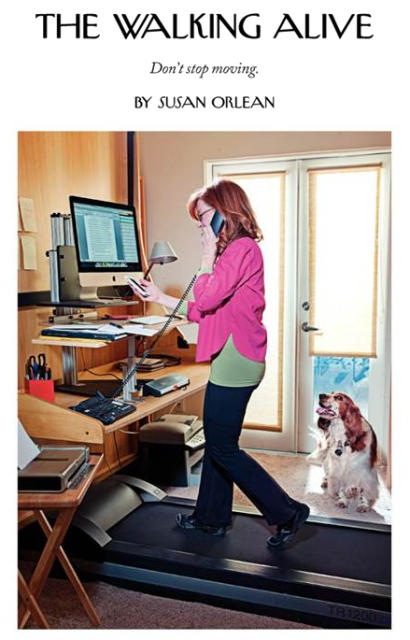 Team Pick Treadmill Desks As Described By The New Yorker