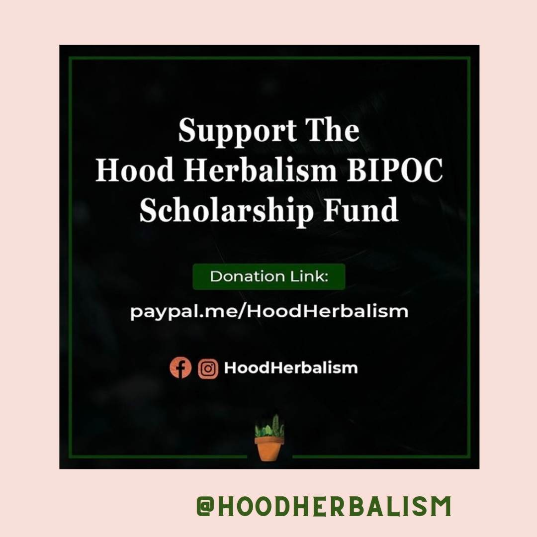 Support a BIPOC fund for herbalist by going to their instagram page @Hoodherbalism