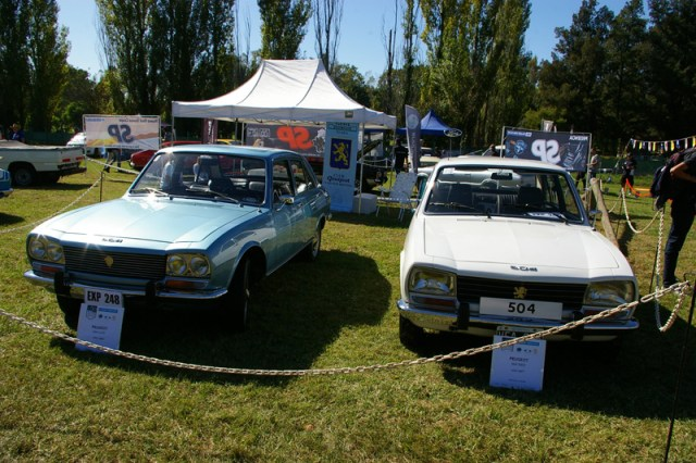 50 años del Peugeot 504