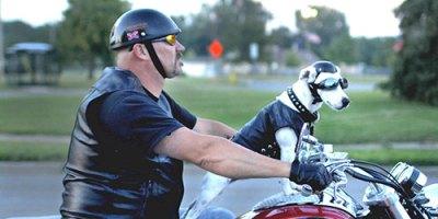 Gogle motocyklowe