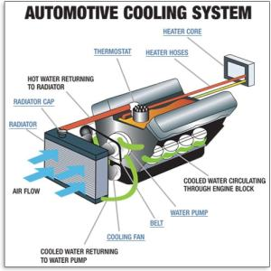 Cooling System  Understand Your Vehicle  AutoZone