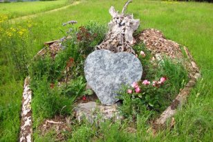 Le coeur et le tronc d'arbre