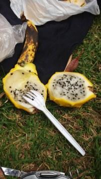 Mais quel est donc ce fruit ?