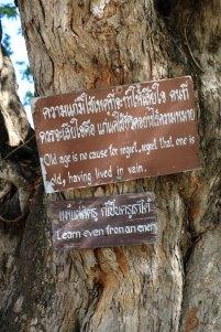 Citations, Wat Traphang Thong Lang, le temple proche de la cité antique de Sukhothaï