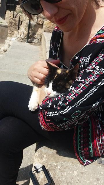 petit chat dans les bras de Laura à Carthage, on le ramène ?