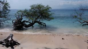 sur la plage de Gili Meno
