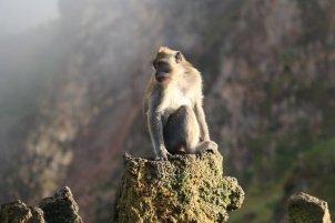 en redescendant de l'ascension du mont Batur, près de la stèle d'informations
