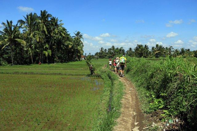 sur le chemin de la randonnée de Keliki à Ubud