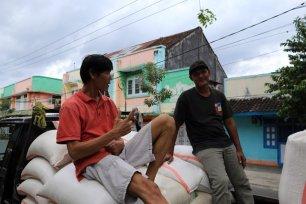 marchands de riz