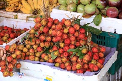 au marché de tout à Battambang