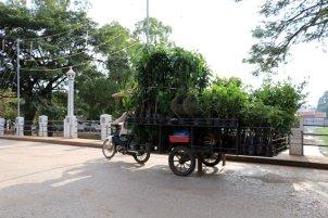 tuk tuk de marchandises à Siem Reap - L'autre ailleurs au Cambodge