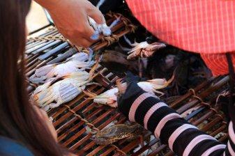 directement depuis la nasse, acheter le crabe vivant au marché au crabe et aux poissons à Kep