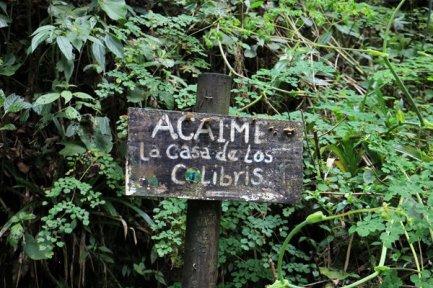 la randonnée sous les palmiers de cire et vers la maison des colibris dans la vallée de Cocora près de Salento - l'autre ailleurs en Colombie, une autre idée du voyage