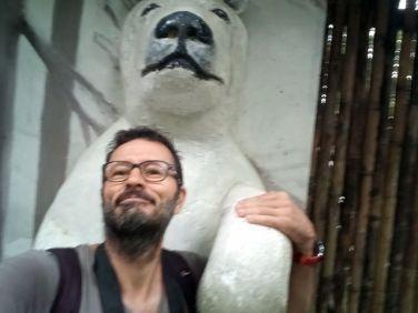Sont gentils les ours