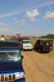dans la réserve de Kadula National Park, mon premier safari photos - l'autre ailleurs au Sri-Lanka, une autre idée du voyage