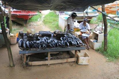 port de pêche dans la ville de Galle - l'autre ailleurs au Sri-Lanka, une autre idée du voyage
