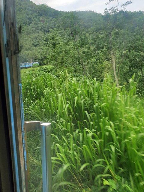 porte ouverte depuis le train de Colombo à Kandy - l'autre ailleurs au Sri-Lanka, une autre idée du voyage