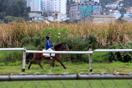 hippodrome à Nuwara Elyia - l'autre ailleurs au Sri-Lanka, une autre idée du voyage