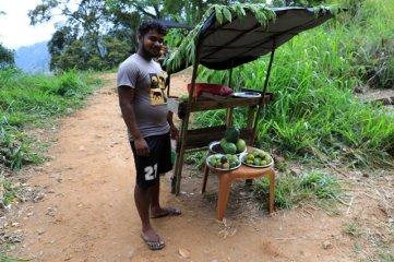 vendeur de fruits tout près de la voie , près d'Ella - l'autre ailleurs au Sri-Lanka, une autre idée du voyage