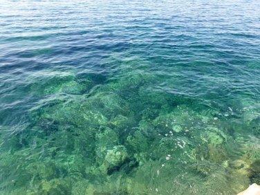 je n'ai pas su résisté à cette eau si claire à Cavtat près de Dubrovnik - l'autre ailleurs en Croatie, une autre idée du voyage